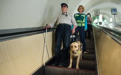 image for It's International Guide Dog Day on April 28th